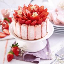 Dessert : Charlotte aux...